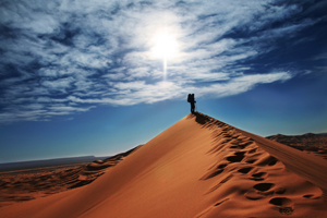 Nature___Desert_The_lonely_traveler_in_the_desert_089486_